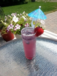 blueberry Spritzer